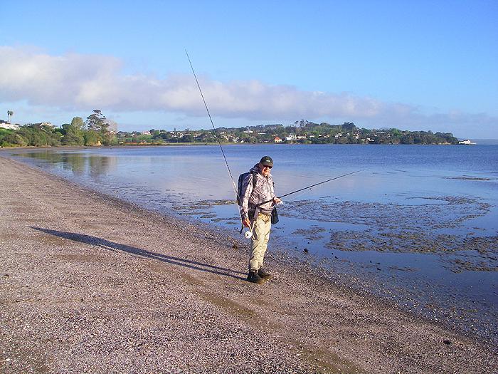 Kahawai Fish   Mike Ladle S Fishing Diary